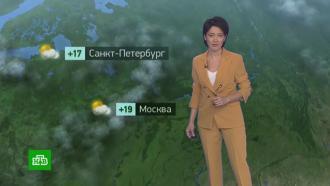 Утренний прогноз погоды на 29сентября