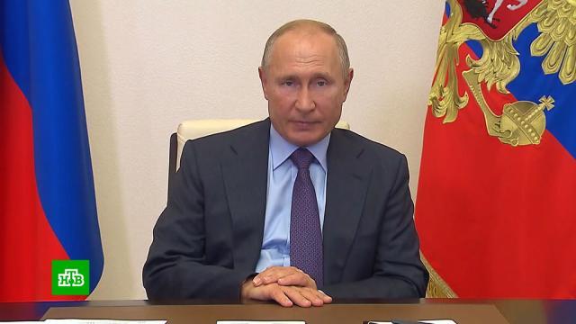 Путин поручил запретить вывоз ценного леса из России.Путин, лес, экология.НТВ.Ru: новости, видео, программы телеканала НТВ