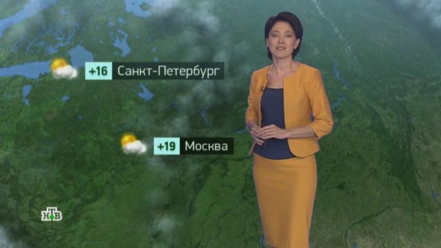 Утренний прогноз погоды на 30сентября.погода, прогноз погоды.НТВ.Ru: новости, видео, программы телеканала НТВ