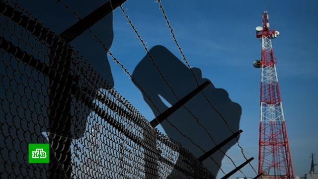 ФСИН решила покончить стюремными колл-центрами.ФСИН, мошенничество, тюрьмы и колонии.НТВ.Ru: новости, видео, программы телеканала НТВ