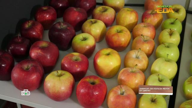 На вкус ицвет: какие яблоки полезнее— красные или зеленые.НТВ.Ru: новости, видео, программы телеканала НТВ