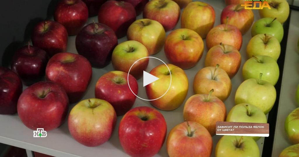 На вкус ицвет: какие яблоки полезнее— красные или зеленые