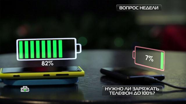 Как правильно хранить продукты вхолодильнике?НТВ.Ru: новости, видео, программы телеканала НТВ