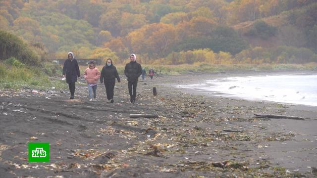 Генпрокуратура сообщает оследах ГСМ впробах воды скамчатского пляжа.Камчатка, разлив нефтепродуктов и химикатов, экология.НТВ.Ru: новости, видео, программы телеканала НТВ