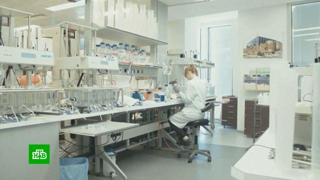 «Уже тошнит»: европейцы устали от коронавирусных запретов.Бельгия, Германия, Европа, Франция, карантин, коронавирус.НТВ.Ru: новости, видео, программы телеканала НТВ