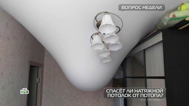 Спасетли натяжной потолок от затопления?НТВ.Ru: новости, видео, программы телеканала НТВ