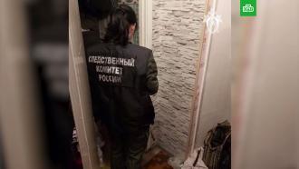 Видео из квартиры «борского убийцы»