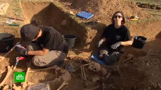 Французские археологи приехали в Россию в поисках утраченных захоронений Крымской войны