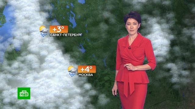 Прогноз погоды на 21 октября.погода, прогноз погоды.НТВ.Ru: новости, видео, программы телеканала НТВ