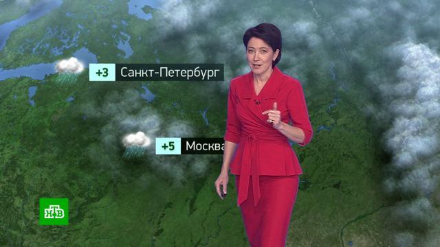 Утренний прогноз погоды на 20октября.погода, прогноз погоды.НТВ.Ru: новости, видео, программы телеканала НТВ