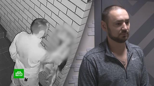 В Краснодаре хозяин жестоко избил собаку под камерами наблюдения.Краснодар, животные, собаки.НТВ.Ru: новости, видео, программы телеканала НТВ