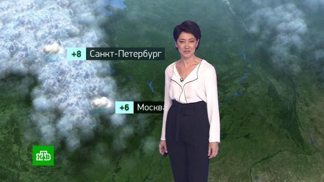 Утренний прогноз погоды на 22октября.погода, прогноз погоды.НТВ.Ru: новости, видео, программы телеканала НТВ