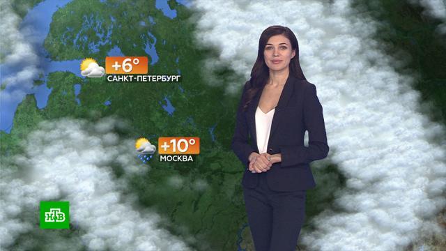 Прогноз погоды на 24октября.погода, прогноз погоды.НТВ.Ru: новости, видео, программы телеканала НТВ