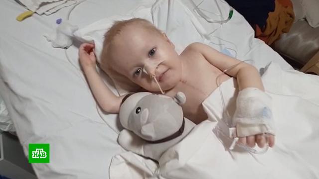 Малыши из России стали заложниками ограничений на трансплантацию в Индии.Индия, дети и подростки, медицина, трансплантология.НТВ.Ru: новости, видео, программы телеканала НТВ