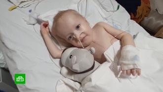 Малыши из России стали заложниками ограничений на трансплантацию в Индии