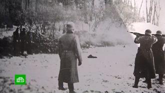 Дело озверствах нацистов вдеревне Жестяная Горка рассматривают всуде