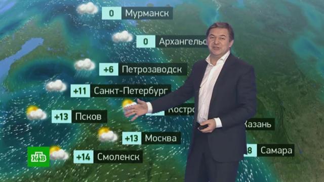 Утренний прогноз погоды на 23октября.погода, прогноз погоды.НТВ.Ru: новости, видео, программы телеканала НТВ