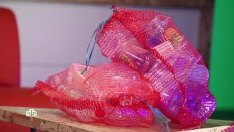 Пластмассовый мир: опасность микропластика для здоровья