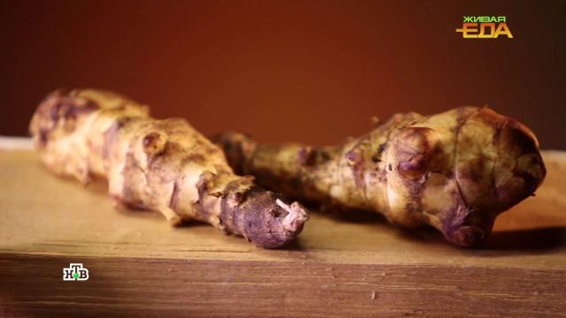 Король грибов: вчем польза боровика.НТВ.Ru: новости, видео, программы телеканала НТВ