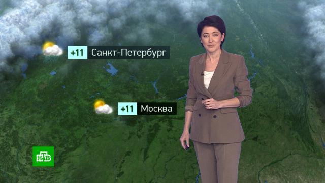 Утренний прогноз погоды на 27октября.погода, прогноз погоды.НТВ.Ru: новости, видео, программы телеканала НТВ