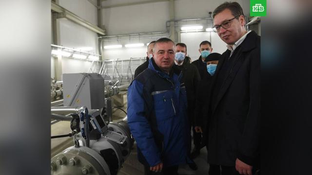 Сербия начала получать российский газ по «Турецкому потоку».Сербия, газ, газопровод.НТВ.Ru: новости, видео, программы телеканала НТВ