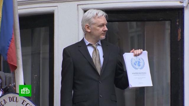 США оспорят отказ британского суда вэкстрадиции Ассанжа.Ассанж, Великобритания, США, экстрадиция.НТВ.Ru: новости, видео, программы телеканала НТВ