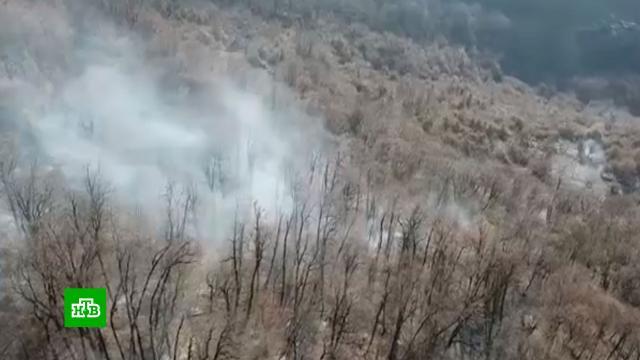 ВМЧС назвали причину лесных пожаров вСочи.Абхазия, Краснодарский край, Сочи, лесные пожары.НТВ.Ru: новости, видео, программы телеканала НТВ