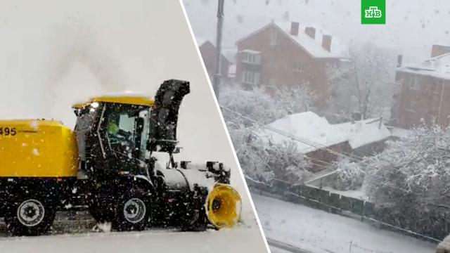 Краснодар парализовало из-за мощного снегопада.Краснодар, Краснодарский край, зима, снег.НТВ.Ru: новости, видео, программы телеканала НТВ