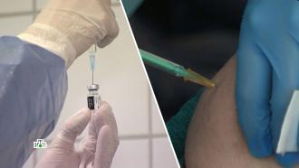 Нехватка игл и боязнь: в ЕС возникли проблемы с вакцинацией от коронавируса.НТВ.Ru: новости, видео, программы телеканала НТВ