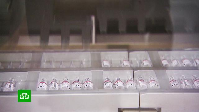 Власти Алжира подтвердили безопасность и эффективность препарата «Спутник V».Алжир, болезни, здоровье, коронавирус, медицина, прививки, Белоруссия.НТВ.Ru: новости, видео, программы телеканала НТВ
