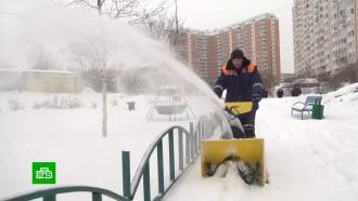 Погодная аномалия: центральные регионы России сковал холод, юг засыпало снегом