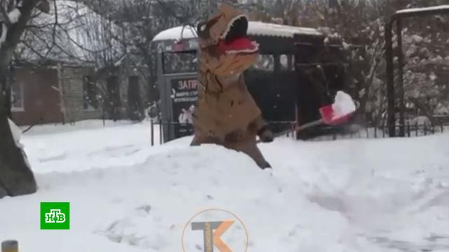 Жители Кубани после снегопада толкают маршрутки и чистят дороги в костюмах динозавров.Сегодня и в ближайшие дни в большинстве регионов России ожидаются аномальные холода. Передвижные пункты обогрева срочно разворачивают даже в субтропическом Крыму. Накануне там из-за мощного снегопада и резкого похолодания образовались гигантские заторы на автотрассах. Сейчас на перевалах дежурит спецтехника, которая помогает вызволять застрявшие машины. Последствия рекордных осадков устраняют и на Кубани.погода, погодные аномалии, морозы, прогноз погоды, зима, климат, Крым, Краснодарский край.НТВ.Ru: новости, видео, программы телеканала НТВ