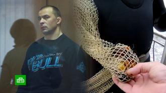 ВКалининграде судят главаря банды, вымогавшей деньги уловцов янтаря.НТВ.Ru: новости, видео, программы телеканала НТВ