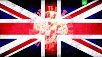 Биолог: британский штамм COVID-19 может стать основным в России.болезни, коронавирус, эпидемия.НТВ.Ru: новости, видео, программы телеканала НТВ