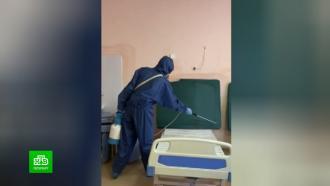 Елизаветинскую больницу Петербурга обработали после нашествия тараканов