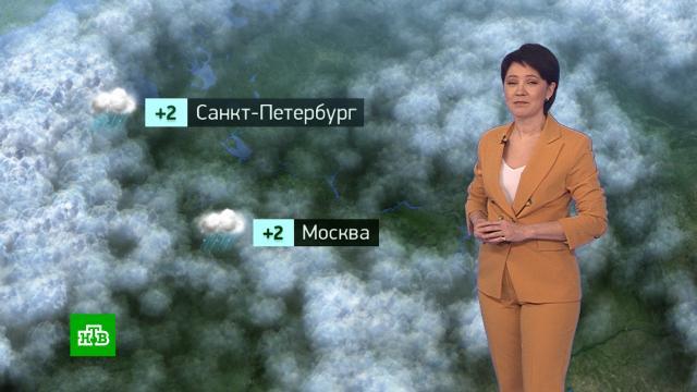 Утренний прогноз погоды на 26 января.погода, прогноз погоды.НТВ.Ru: новости, видео, программы телеканала НТВ