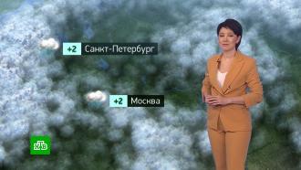 Утренний прогноз погоды на 26января.НТВ.Ru: новости, видео, программы телеканала НТВ