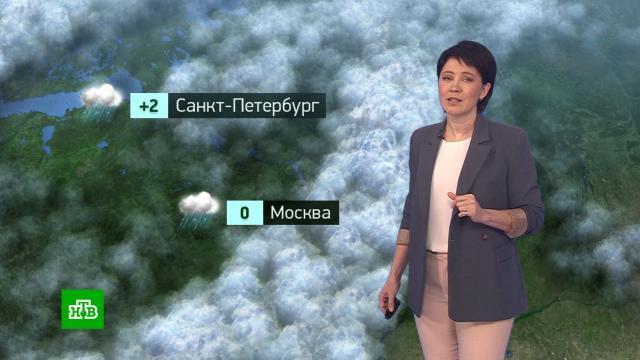 Утренний прогноз погоды на 27января.погода, прогноз погоды.НТВ.Ru: новости, видео, программы телеканала НТВ
