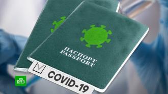 Введение «ковидных паспортов» в Башкирии перенесли на неопределенный срок