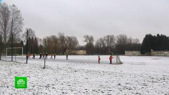 Минкульт иместные власти решили, как сохранить стадион вПавловске