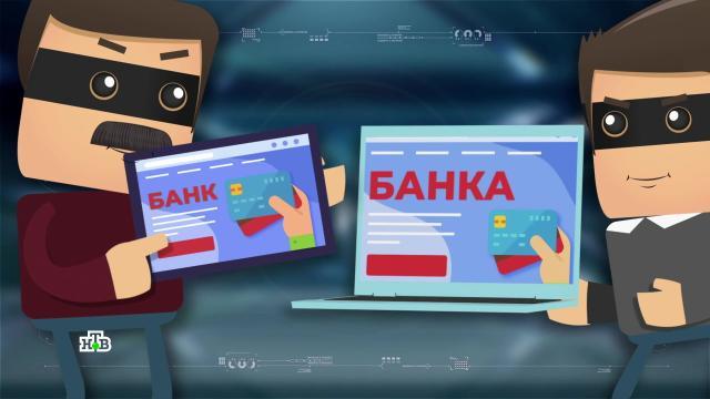 Сети обмана: уловки интернет-мошенников.НТВ.Ru: новости, видео, программы телеканала НТВ