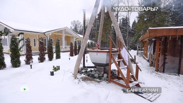 Банный чан иавтоматический туалет для домашних питомцев.НТВ.Ru: новости, видео, программы телеканала НТВ