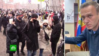 Генпрокуратура РФ поддержала требование назначить Навальному реальный срок