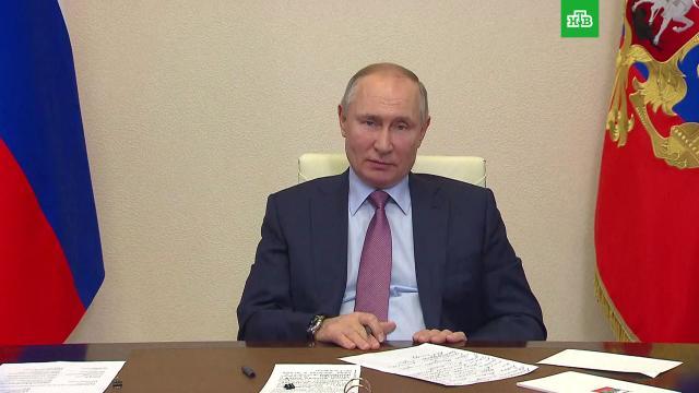Путин обвинил соцсети в управлении сознанием пользователей.Путин, соцсети, экономика и бизнес, Интернет.НТВ.Ru: новости, видео, программы телеканала НТВ