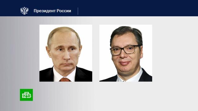 Путин иВучич обсудили коронавирус иКосово.Косово, Путин, Сербия, коронавирус, переговоры.НТВ.Ru: новости, видео, программы телеканала НТВ