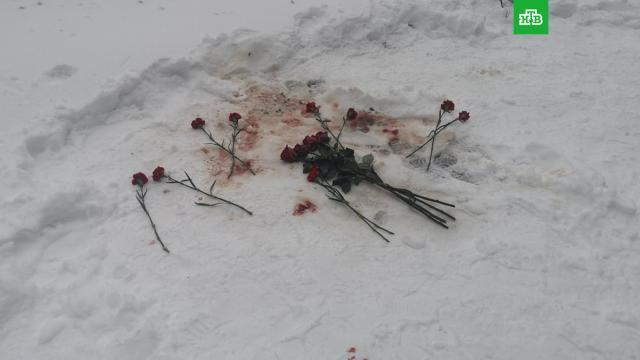 «Меня убивают!»: в Воронеже зарезали школьную учительницу.Воронеж, жестокость, криминал, убийства и покушения.НТВ.Ru: новости, видео, программы телеканала НТВ