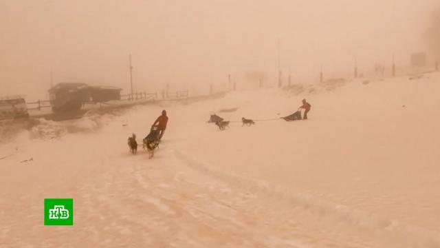Склоны альпийских курортов окрасились воранжевый цвет.Италия, горы, погодные аномалии.НТВ.Ru: новости, видео, программы телеканала НТВ