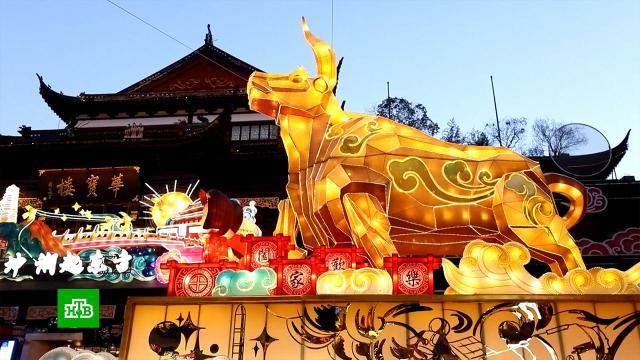Красные фонарики и парные надписи на дверях: Китай готовится к встрече Нового года.Китай, Новый год, торжества и праздники, традиции и обычаи.НТВ.Ru: новости, видео, программы телеканала НТВ