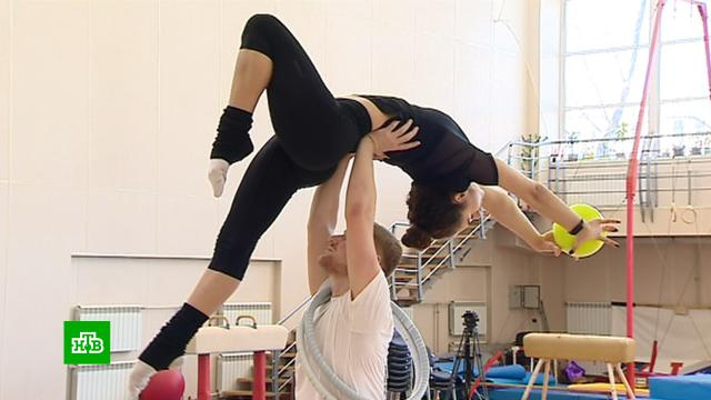 Петербургскую художественную гимнастику уверенно покоряют мужчины.Санкт-Петербург, гимнастика, спорт.НТВ.Ru: новости, видео, программы телеканала НТВ