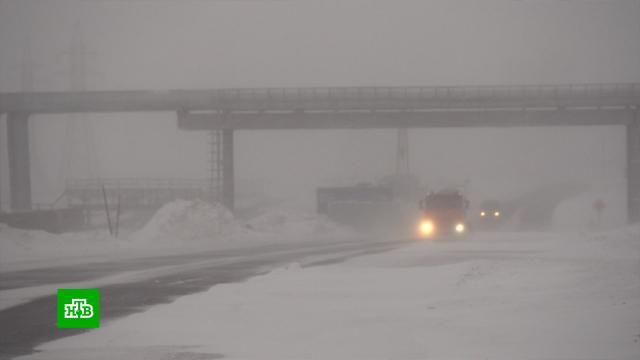 На Сахалине дома завалило снегом по самую крышу.Сахалин, зима, погода, снег, Северный Кавказ, курорты.НТВ.Ru: новости, видео, программы телеканала НТВ